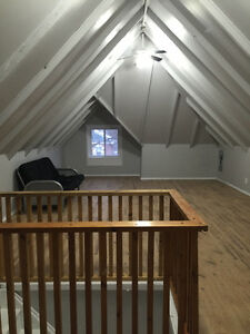Newly Renovated 2 bedroom with 1 room for rent!