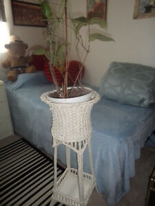 36 inch high with wicker plant stand including plant if you wish