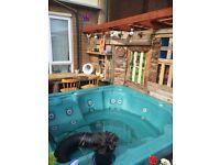 Jazuzzi Hot Tub Parts WANTED