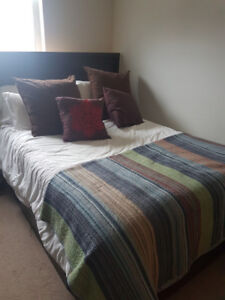 Full sized bed with frame and headboard