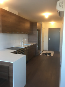 Brand new condo at 2 minute walk from montmorency metro station