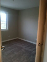 Are looking for new contract, painting and cleaning jobs