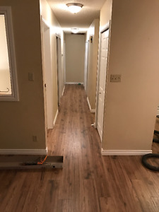 Five bedrooms - Lakeview - just finishing full reno