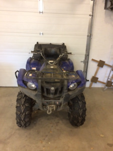 Grizzly 550 for sale