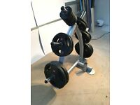 Jordon Olympic 160kg weights set and weight tree