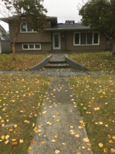 NEWLY RENOVATED MAPLERIDGE HOUSE AVAILABLE NOW TO RENT