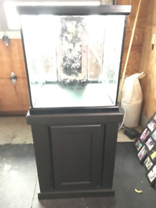 Saltwater Tank with Stand