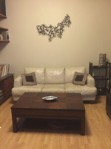 Available- MAIN FLOOR 1 Bedroom Apt. in Downtown St. John's