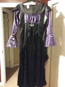 Adult Costume - size large