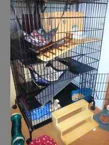 FERRET CAGE...  FOR SALE..( 3 tier)