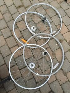 Lot of bicycle wheels