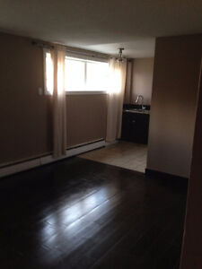 Newly renovated 2 bedroom basement suite Strathcona County Edmonton Area image 3
