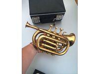Small Pocket cornet