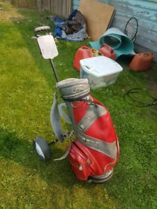 Golf bag and cart
