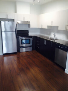 UBC village 1 bedroom and Den penthouse