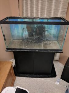 30 Gal fish tank with stand etc