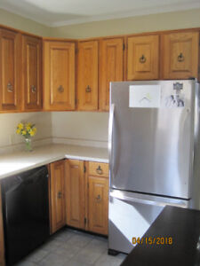Oak kitchen cabinets, counter top, sink and faucet