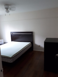 3 rooms for rent in saint hubert (all included)