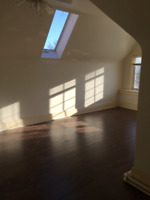 Private Room for Rent near Liberty Village with SKYLIGHT