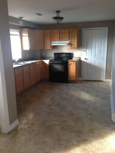Beautiful 2 Bedroom Basement Apartment! HEAT/LIGHTS INCLUDED!