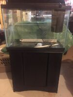 20 gal Fish tank with Stand