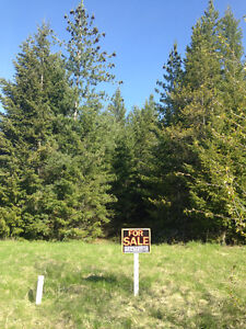 GORGEOUS LOT IN BLIND BAY