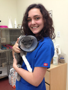 Vet Assistant Animal Care -- exotics, dog walking, vacation care