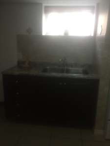 NEWLY RENOVATED BASEMENT APARTMENT NIAGARA FALLS