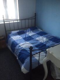 Double room in flat - share with owner
