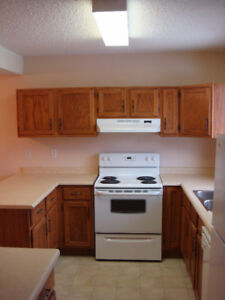 Well Maintained Townhome unit in SW Edmonton for rent
