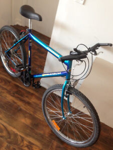 Classic style ChroMoly MTB/city bike in great condition