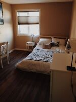 Perfect room in Strathcona!