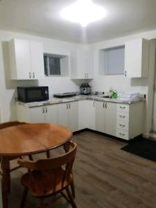 Spacious furnished one bedroom suite