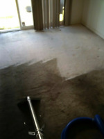 CALGARY AND AREA DEEP STEAM CARPET CLEANING SERVICE!