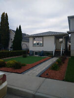 Newly Updated 2 Bed 1 Bath Base Suite. 1st months rent $330!!