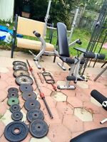 Steel Weights with Bench & Bars