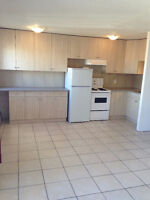 1 bedroom Suite, smaller, 450 SF. new kitchen/bath. March 1st,