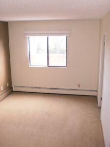 large master bedroom w/own washroom