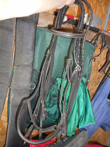 Sold horse lots of extras to sell