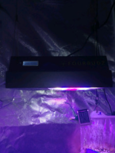 640w led grow light i can get tents