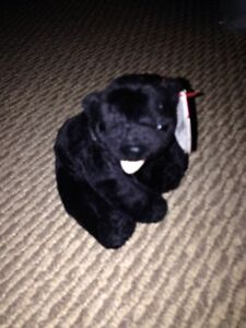 Cinders Ty beanie baby with tags price firm London Ontario image 1