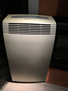 Delonghi Pinguino 10,000 BTU portable Air Conditioner