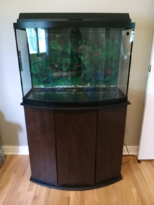 Bow front fish tank with stand