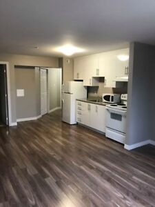 Beautiful 2 Bedroom Apartment - Available November 1st