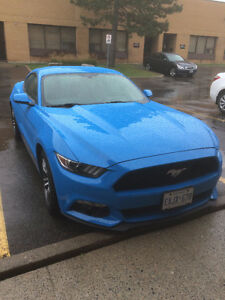 Lease Takeover (or sale) - 2017 Ford Mustang EcoBoost Premium