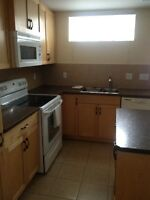 BASEMENT SUITE FURNISHED & UTILITIES INCLUDED,NW Dec.1