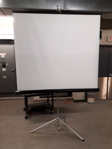 Projector screen,  portable