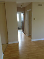 CENTRAL, Large 2Bdm, BBQ Friendly Patio, DogOK, Dishwasher