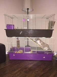 Double decker small animal cage.