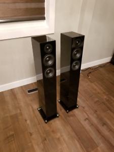 Pro-JECT 10 Audiophile tower speakers
